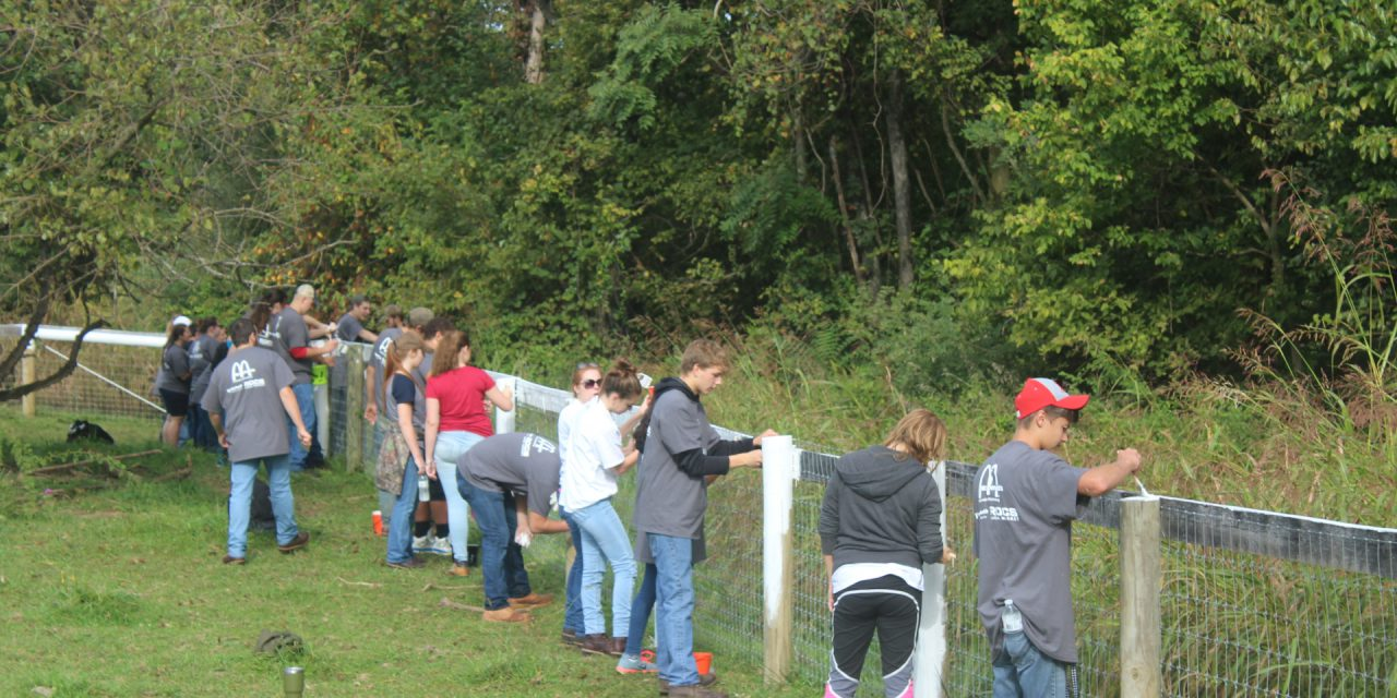 Students Give Back on Day Of Caring